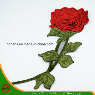 2017 New Design Embroidery Lace (HANS-CH11)