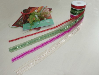 Fashion Style Gift Wrapping Ribbon (BZ-02)