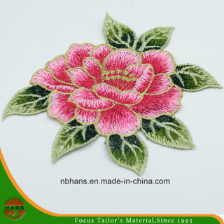 2017 New Design Embroidery Lace (HANS-CH14)