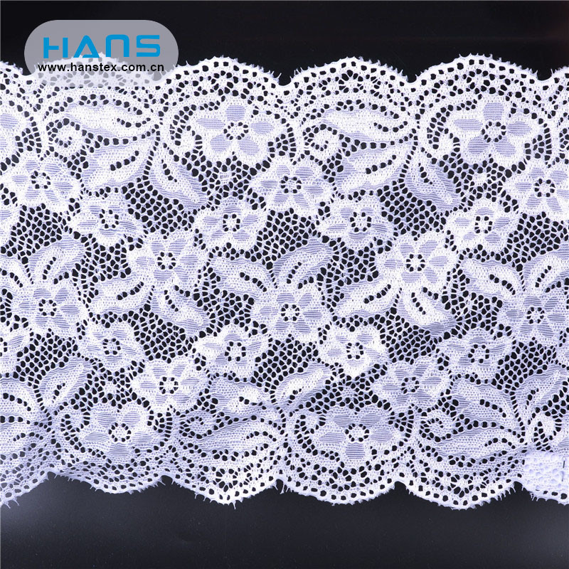 Hans Free Sample Yards Transparent Lace Panty
